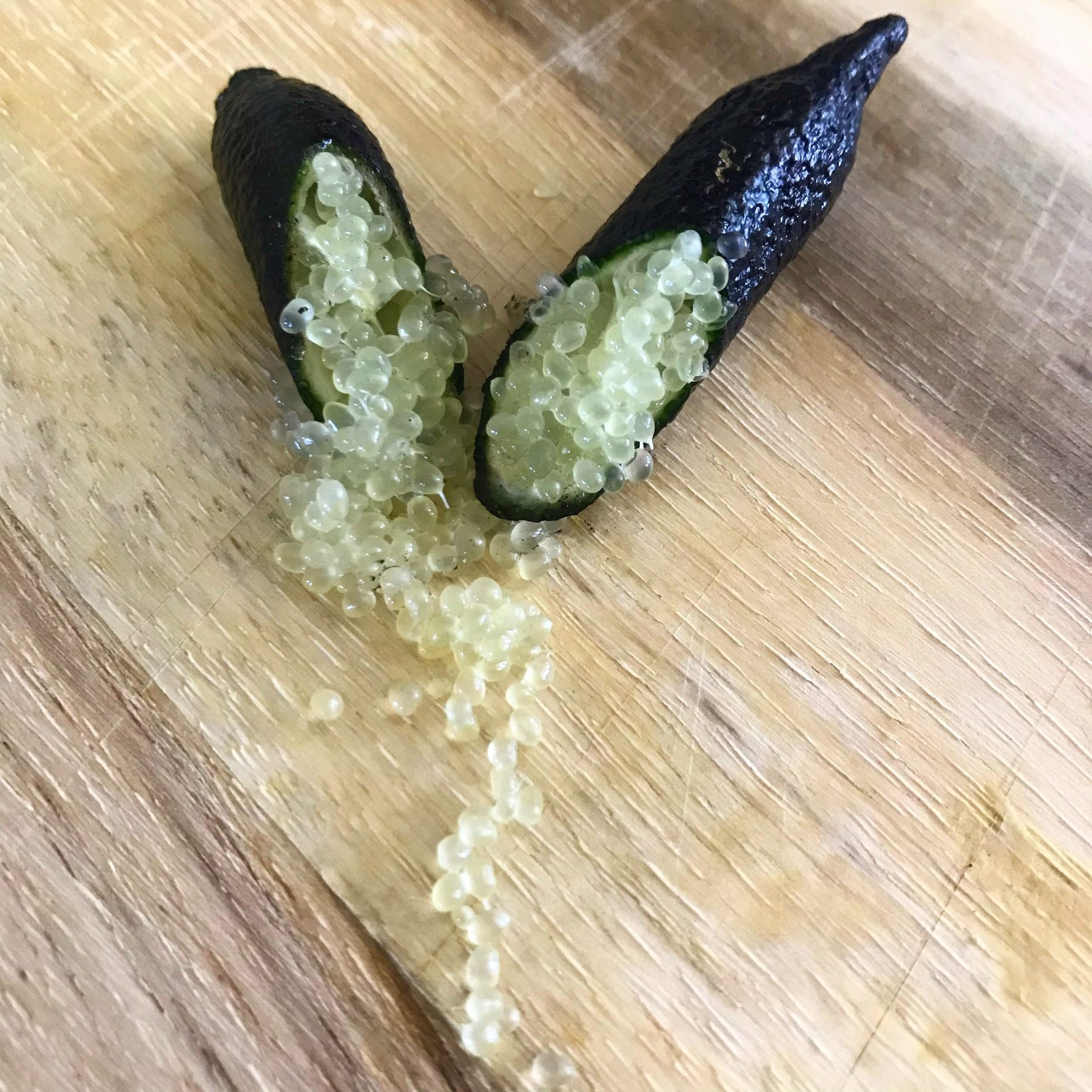 Australian Finger Lime